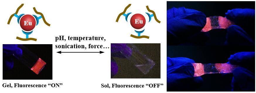 Dynamic coordination of Eu-iminodiacetate to control fluorochromic response of polymer hydrogels to multistimuli